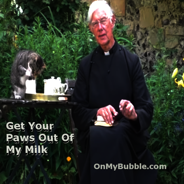 Cat steals some milk during Dean of Canterbury Cathedral's morning sermon