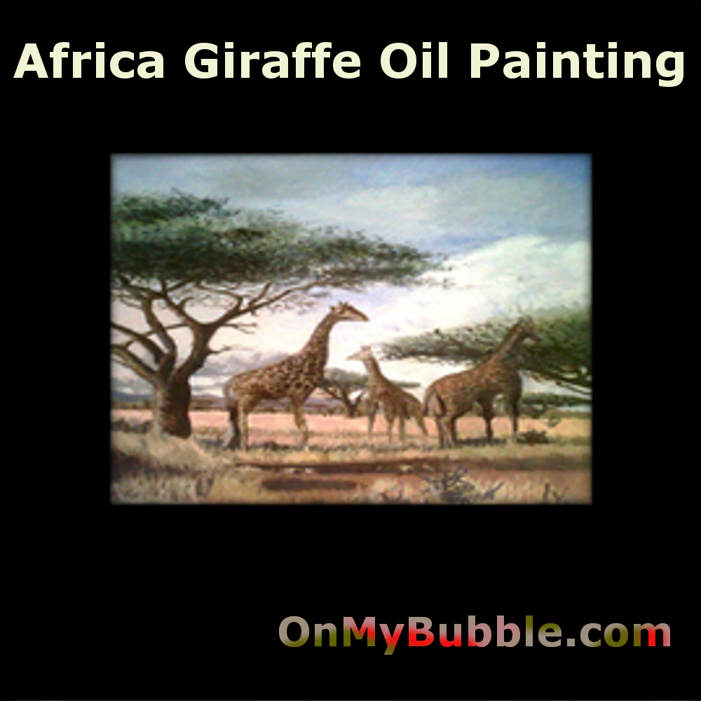 South African Giraffe Oil On Board