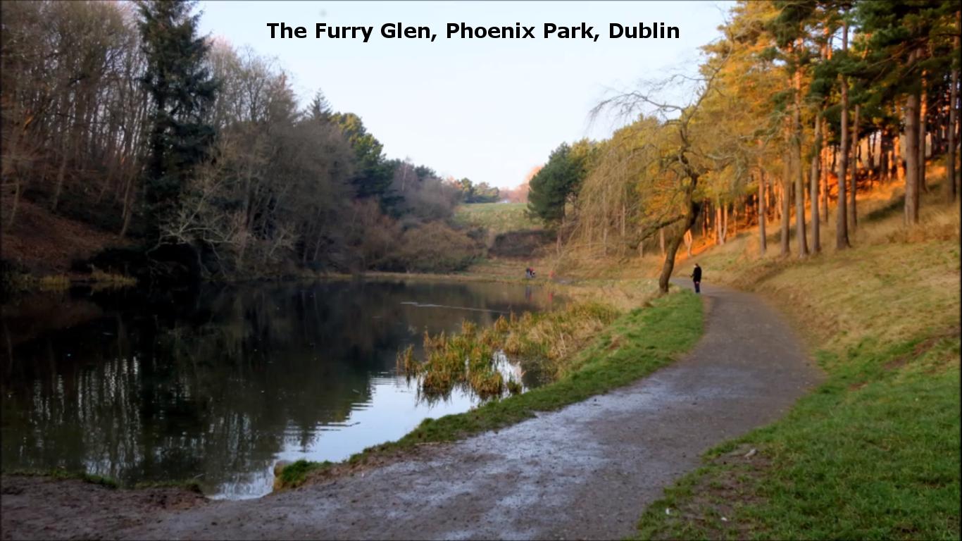 The Furry Glen Phoenix Park Dublin