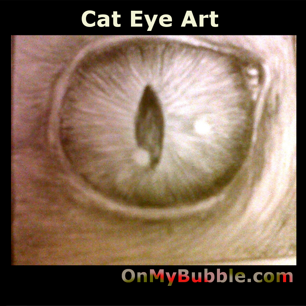 The study which was first made in 1992 brings out the mesmorising effect of the beautiful cats eye. The viewer is transfixed in an almost hypnotic gaze that transcends the now and transports you to an ethereal place. The onlooker becomes the subject you could be a mouse about the be eaten or toyed with. Is this the precise moment the cat will strike?