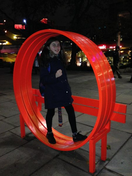 Hamster Wheel For Exercise in the home