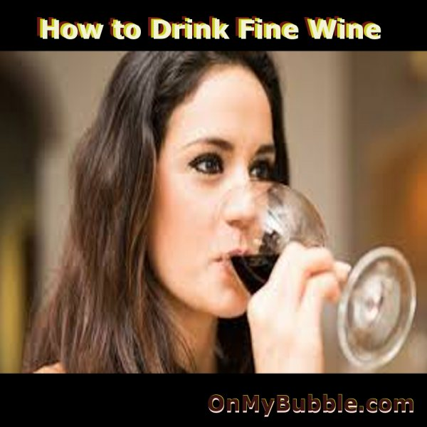The Beginners Guide To Wine Appreciation